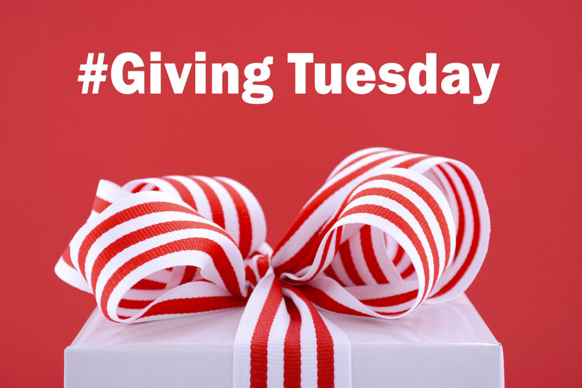 #GivingTuesday Carnegie Investment Counsel